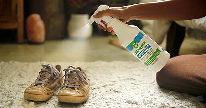 Top 10 Best Cat Repellent Spray Reviews