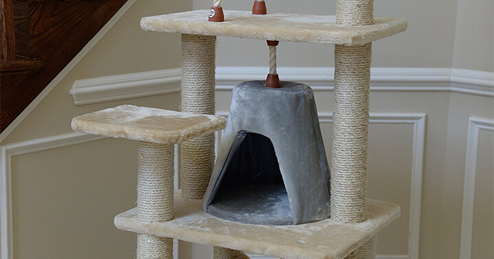 Top 10 Best Cat Trees Reviews