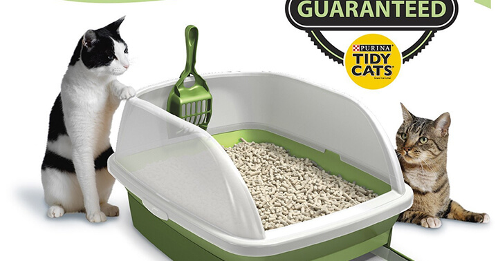 Top 10 Best Clumping Cat Litter Reviews