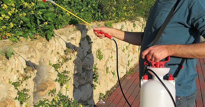Top 10 Best Garden Sprayers Reviews