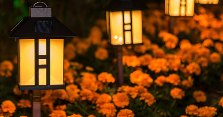 Top 10 Best Solar Lights for Garden Reviews