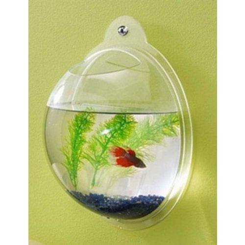 Fish Bubble-Wall Mounted Acrylic Fish Bowl