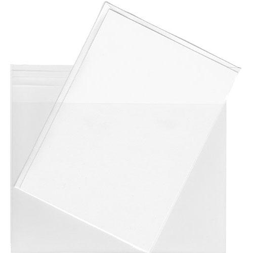 4. Clear Plastic Envelope Bags - 100 Envelope Bags