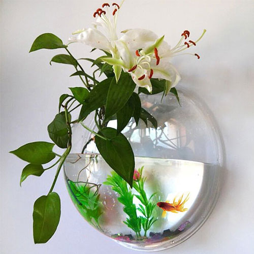 Wall Fish Tank Acrylic Wall Aquarium