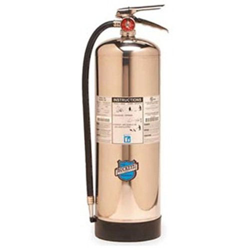 1. Buckeye 50000 Stainless Steel Water Pressurized Hand Held Fire Extinguisher