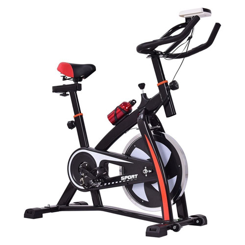Goplus Adjustable Exercise Bike